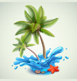 water splash with palms vector image vector image