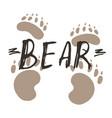 bear paw print design vector image