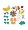 collection of discarded food for freegans isolated vector image vector image