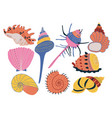 collection of seashells colorful tropical vector image vector image
