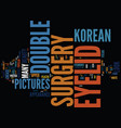 korean double eyelid surgery pictures text vector image vector image