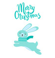 Merry christmas greeting card rabbit long ears vector image