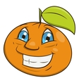 Smiling orange 2 vector image