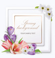 spring background with tulips crocuses anemones vector image vector image