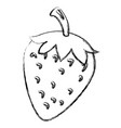 strawberry fresh fruit icon vector image vector image
