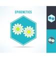 dna epigenetics and genetics mechanism vector image