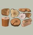 wood stumps set vector image