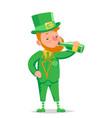 drink green beer leprechaun saint patrick day vector image vector image