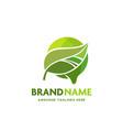 green leaf circle melt background logo vector image vector image