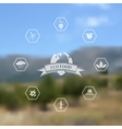 Blurred background with eco and organic food icons vector image