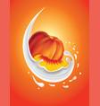 milk splash with fresh peach vector image