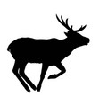 decoration elegance horned object shadow buck vector image vector image