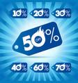 discount winter label hot sale vector image