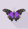 flat butterfly3 vector image vector image