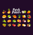 fruits and berries set of icons food vector image