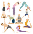 people work out in fitness club yoga classes vector image vector image