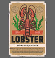 seafood lobster restaurant delicacy ocean fishing vector image vector image