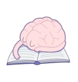 Sleeping brain Brain collection vector image vector image