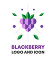blackberry berry blackberry berry icon vector image vector image