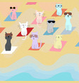 cute cartoon cat kitten on the beach vector image