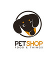 pet shop logo concept isolated logotype vector image