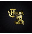 Thank you so much - typographic calligraphic vector image vector image