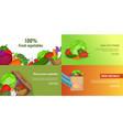 fresh vegetables banner set template cartoon vector image