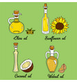 4 cooking oils in cute sketchy bottles vector image vector image