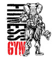 bodybuilder head elephant fitness gym muscle vector image