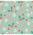 Christmas pattern with candy canes and hollies vector image