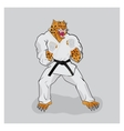 Martial arts fighter leopard in the white gi vector image vector image