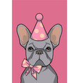 birthday girl bulldog vector image