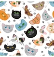Cat face background with paws vector image vector image