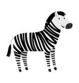 cute zebra cartoon animal icon vector image