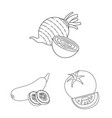 design of vegetable and fruit logo vector image vector image