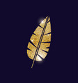 gold feather plume design vector image vector image