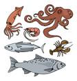 ocean life sea animals healthy seafood illu vector image vector image