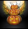 three halloween pumpkins vector image