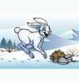 arctic hare in the winter vector image