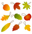 Autumn Leaves Hang Tags vector image vector image