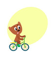 cute little bear character riding bicycle cycling vector image vector image