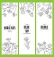design template with wild flowers vector image vector image