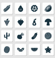 food icons set with kiwi beet cocoa beans and vector image