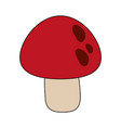 red mushroom isolated vector image