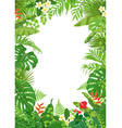 colorful frame with tropical plants vector image vector image