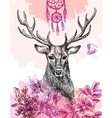 hand drawn deer vector image vector image