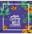 hello spring design vector image