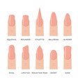 natural fashion trend female nail manicure shape vector image