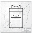two presents icon vector image