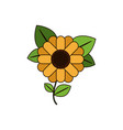 white background with abstract sunflower with stem vector image